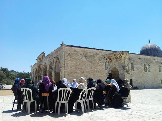 نساء يدرسن في حلقات العلم في المسجد الأقصى